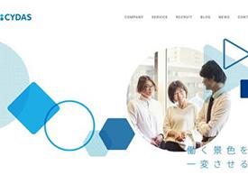 Profile Manager(CYDAS)の公式サイトキャプチャ
